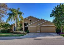 View 10408 Palmbrooke Ter Bradenton FL