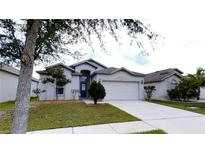 View 501 Delwood Breck St Ruskin FL