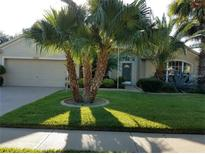 View 3724 Eaglewood St Valrico FL