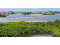 View 393 North Point Rd # 1002 Osprey FL