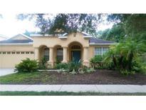 View 9070 Pinebreeze Dr Riverview FL