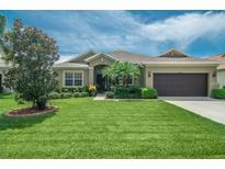 View 4365 E 85Th Avenue Cir E Parrish FL