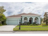 View 12706 Princewood Ct Tampa FL