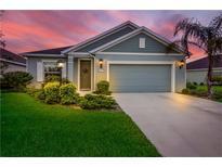 View 4654 Summerlake Cir Parrish FL