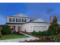 View 8244 Willow Beach Dr Riverview FL