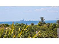 View 3271 Mangrove Point Dr Ruskin FL
