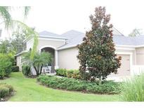 View 4021 Wildgrass Pl Parrish FL