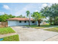 View 507 Ivey Ln Tarpon Springs FL