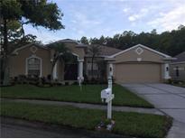 View 8502 Poydras Ln Tampa FL