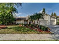View 13708 Walbrooke Dr Tampa FL