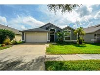 View 10117 Somersby Dr Riverview FL