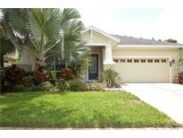 View 8032 Hampton Lake Dr Tampa FL