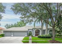 View 9150 Highland Ridge Way Tampa FL