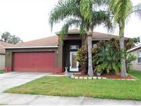 View 34417 Smart Dr Zephyrhills FL