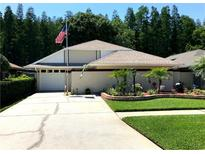 View 5943 Birchwood Dr Tampa FL