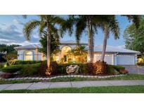 View 3941 Arlington Dr Palm Harbor FL