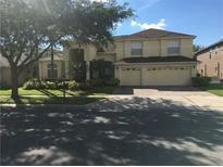 View 18108 Diamond Cove Ct Tampa FL