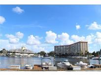 View 5157 Silent Loop # 102 New Port Richey FL