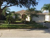 View 12702 Longcrest Dr Riverview FL