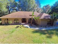 View 8422 Southwood Oaks St Lithia FL