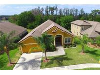 View 4807 Diamonds Palm Loop Wesley Chapel FL