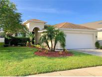 View 9630 Patrician Dr New Port Richey FL