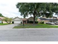 View 18546 Otterwood Ave Tampa FL