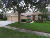 View 4404 Winding River Dr Valrico FL