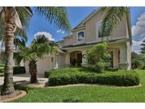 View 3520 Fortingale Dr Wesley Chapel FL