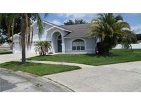 View 11202 Bloomington Dr Tampa FL