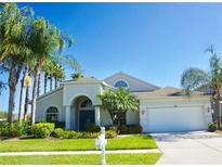 View 27233 Hollybrook Trl Wesley Chapel FL