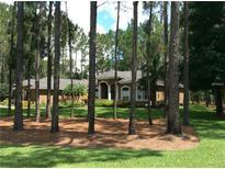 View 417 Pine Bluff Dr Lutz FL