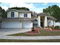 View 10320 Ashley Oaks Dr Riverview FL