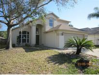 View 28421 Tall Grass Dr Wesley Chapel FL