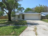 View 13906 Country Court Dr Tampa FL