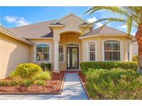 View 20419 Walnut Grove Ln Tampa FL