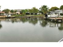 View 4215 Deepwater Ln Tampa FL