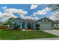 View 10459 Ashley Oaks Dr Riverview FL