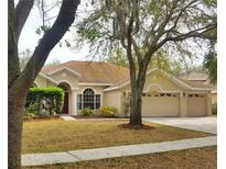 View 15205 Merlinpark Pl Lithia FL
