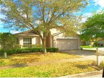 View 29430 Tansy Pass Wesley Chapel FL