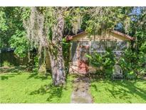 View 8426 N Boulevard St Tampa FL