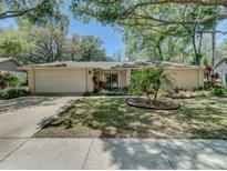 View 16629 Vallely Dr Tampa FL