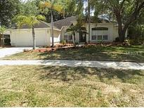 View 2313 Timbergrove Dr Valrico FL