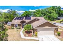 View 24203 Hampton Pl Lutz FL