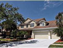 View 11104 Stone Branch Dr Riverview FL