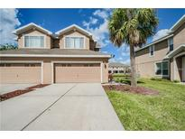 View 6131 Parkside Meadow Dr Tampa FL