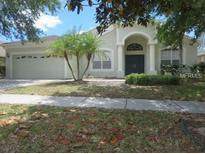 View 5910 Plummer Slade Ct Tampa FL