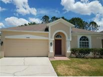 View 12509 Loquat Way Tampa FL
