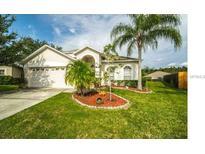 View 10202 Goldenbrook Way Tampa FL