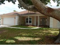 View 9226 Pebble Creek Dr Tampa FL